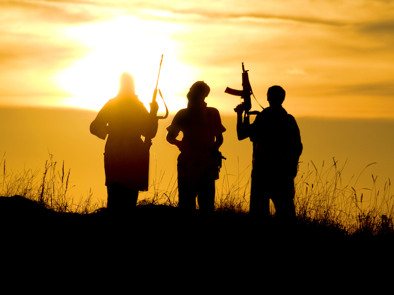 The 15 Biggest Terror Groups in the World