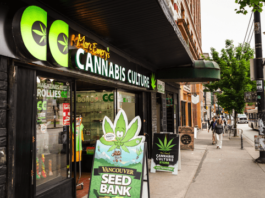 How to Legally Buy Weed from Online Dispensary in Canada