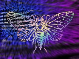 Puzzling the Internet; CICADA 3301: 10 Quick Facts