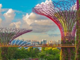 5 Best Trendy Places to Visit in Singapore in 2019