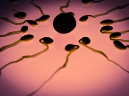 How to Choose A Baby's Gender ThroughIVF (In Vitro Fertilization)