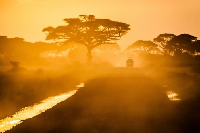 How to Invest in Africa