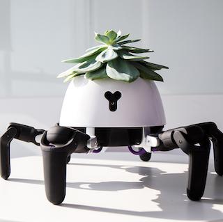 The Hexa Smart Plant Pot