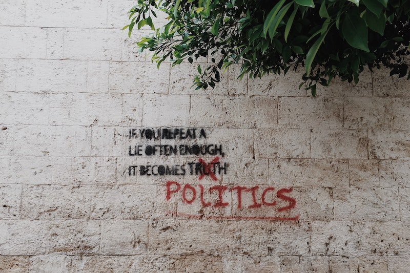 The Alternative for Politics