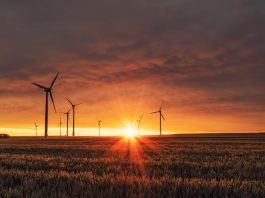 Is 2021 Going to be the Year of the Clean Tech Sector?