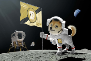 """""""Doge to the Moon"""": How a Crypto Created for Joke Became so Popular"""