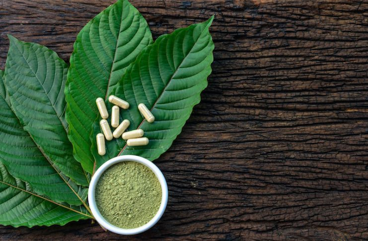 Kratom Consumption Tips For New Users